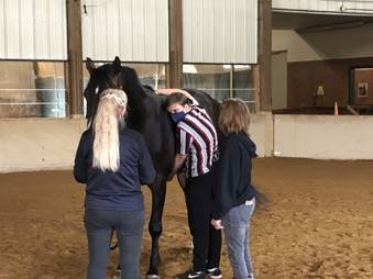 Students took part in Horse Relationship Class