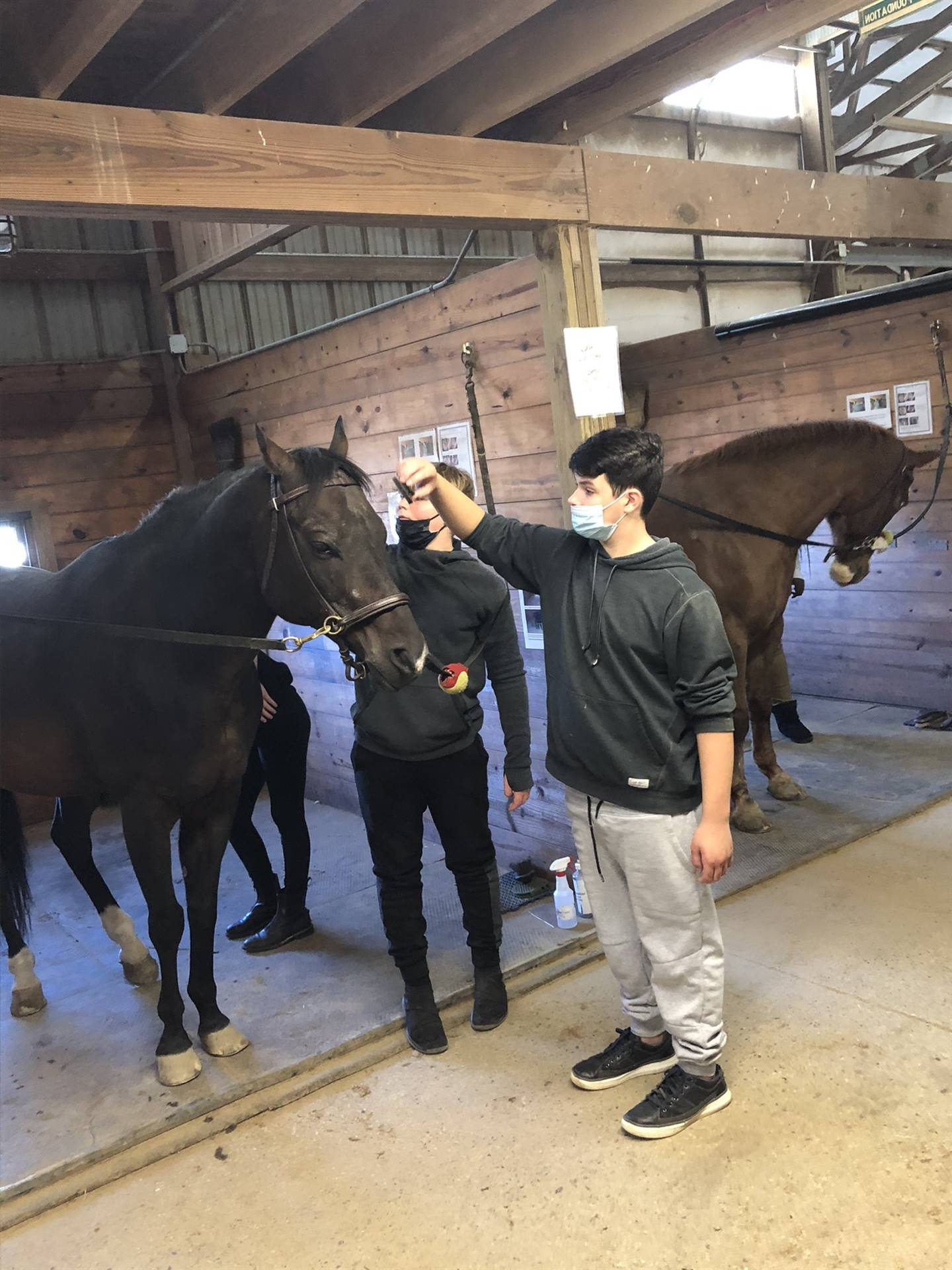 Gaitway High School Students enjoying our Equine Partnerships class!
