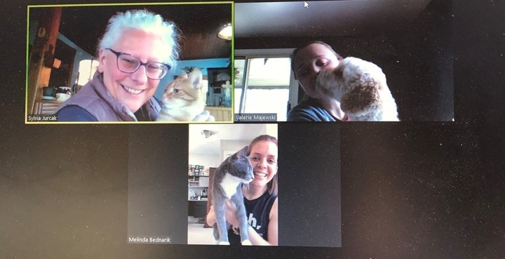 Bring your pet to work virtual conference
