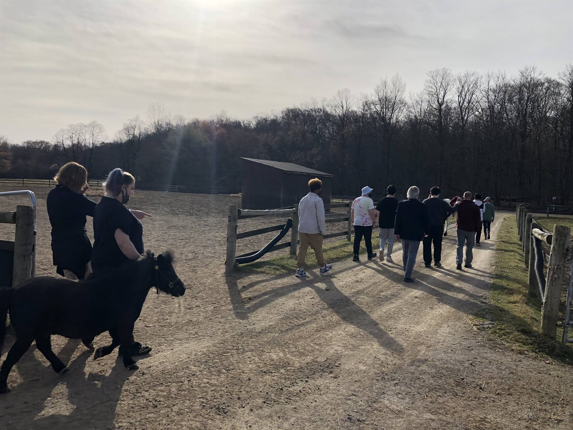 Equine Partnership's class trail walk