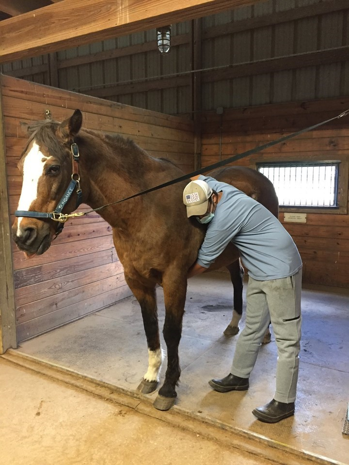 Gaitway students during their first Equine Partnerships class.